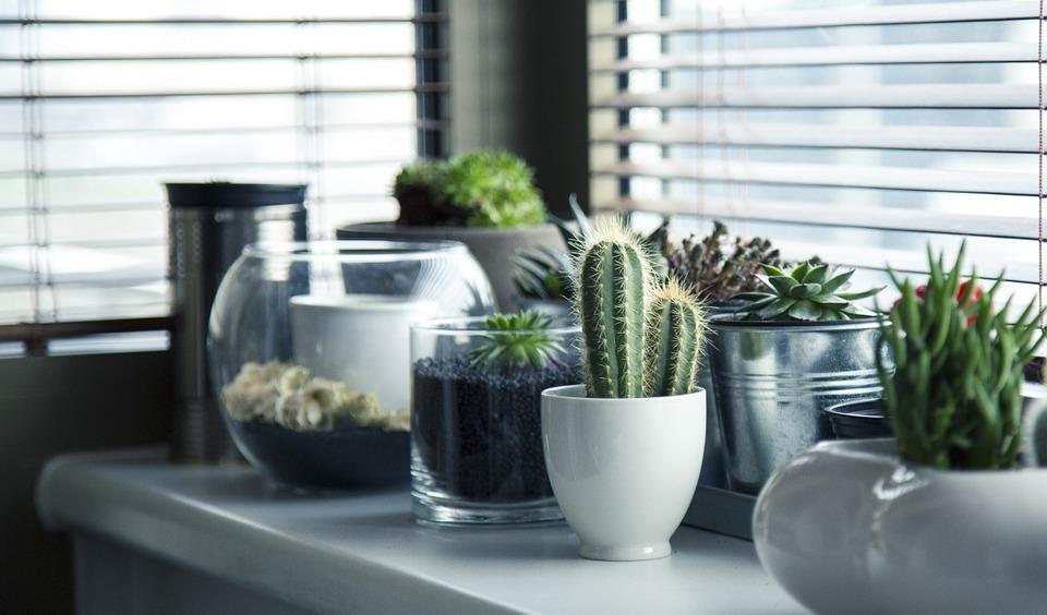 Consigue refrescar tu hogar sin utilizar el aire acondicionado